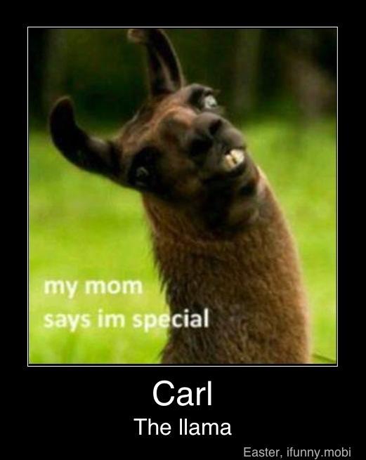 Carl The Llama Meme By Kavan234 Memedroid